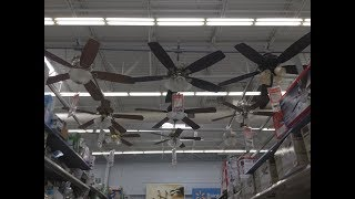 Walmart Ceiling Fan Display you don't see everyday😮😱