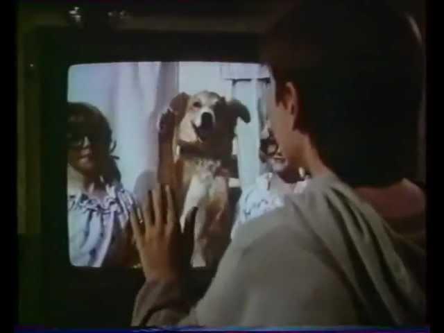 BINGO (1991) Bande annonce Française VHS
