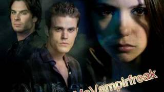 Vampire Diaries- If we ever meet again- Katy Perry feat Timberland
