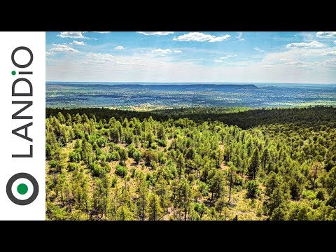 SOLD By LANDiO • New Mexico Land •20 Acres Bordering Cibola National Forest