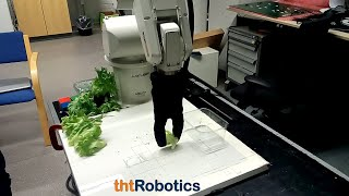 Adaptive Robotic Gripper. Grasping of salad leaves