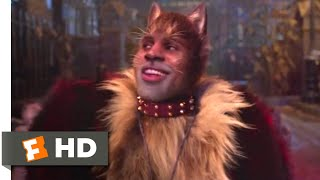 Cats (2019) - The Rum Tum Tugger Scene (3/10) | Movieclips