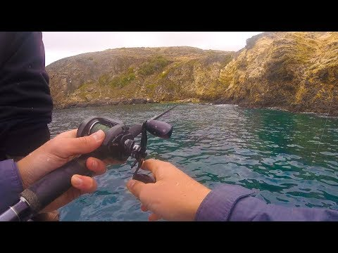 Fishing The Channel Islands -- TONS Of Cudas And Tricky Yellowtail