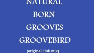Natural Born Grooves - Groovebird (original club mix)