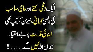 Heart Touching Story Of Injured Dog Urdu Hindi   Urdu Lab