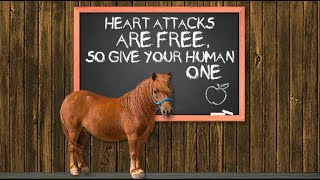 Fundamentals With Phoenix: Lesson 3 - Heart Attacks Are Free So Give Your Human One