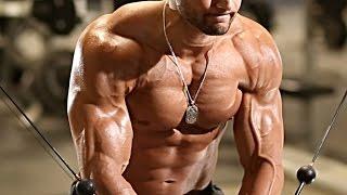 IFBB Pro Matt Acton Pre Olympia Chest/Shoulder workout
