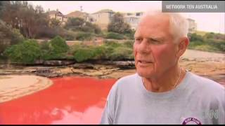 Signs of Thy Coming : Australian Beaches turned Blood Red (Nov 27, 2012)