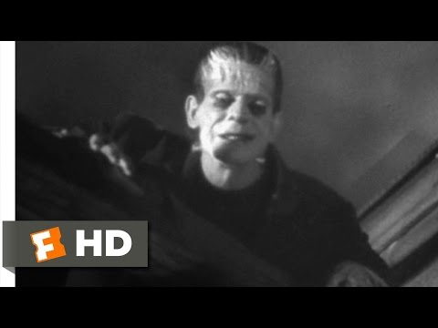Frankenstein (8/8) Movie CLIP - Windmill Burns Down (1931) H