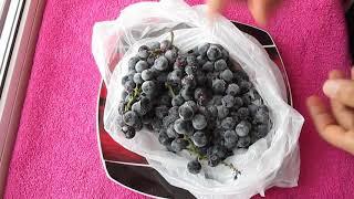 Замороженный виноград - какой он на вкус? Результат эксперимента