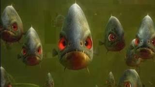 SAMMYS ABENTEUER - AUF DER SUCHE NACH DER GEHEIMEN PASSAGE | Filmclips - Piranhas [HD]