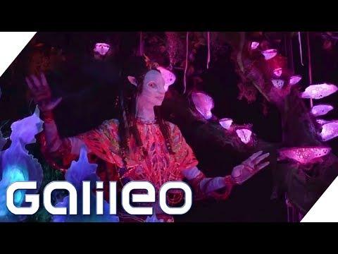 Wie im Film: Der Avatar-Erlebnispark | Galileo | ProSieben