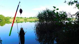 Поплавочная УБИЙЦА КАРАСЯ монтаж снасти на летнюю удочку с скользящим поплавком с кормушкой