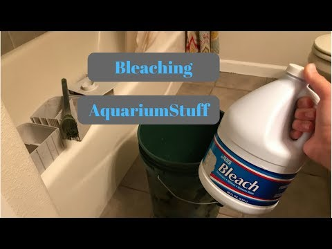 Safely Bleaching Aquarium Equipment