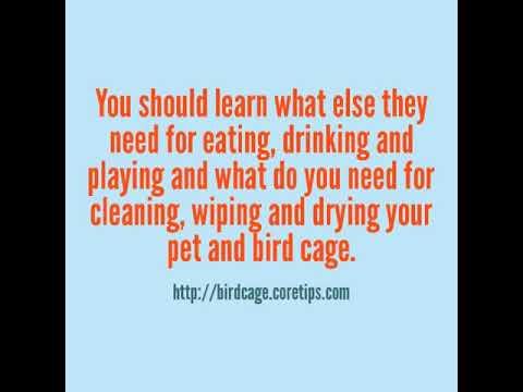 Bird Cage Parts