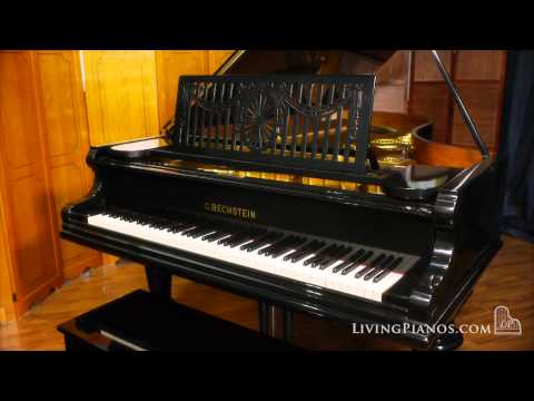 C. Bechstein Art-Case Semi-Concert Grand Piano for Sale - Living Pianos