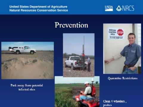 Biosecurity Basics for NRCS Farm Visits