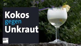 Geheimtipp Für Den Garten: Kokosschaum Gegen Unkraut | Abendschau | BR24
