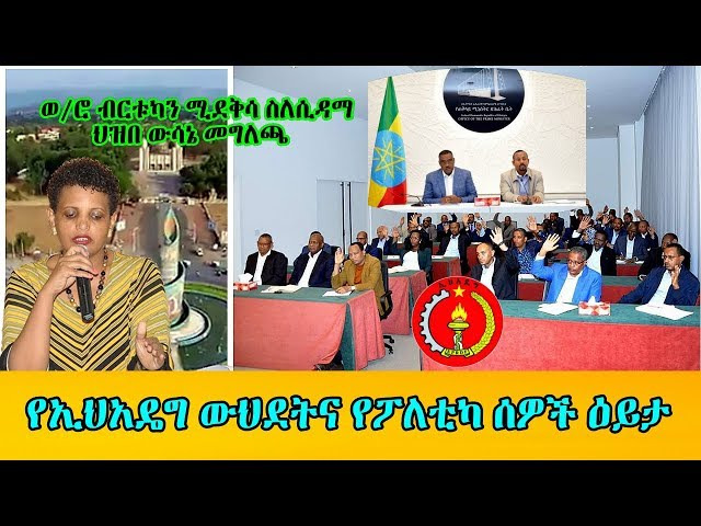 Politicians View On EPRDF Merger