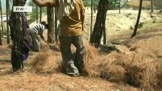 Biomass briquettes in India   Global Ideas
