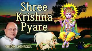Video SHREE KRISHNA PYARE KRISHNA BHAJAN BY VINOD AGARWAL I AUDIO SONG I ART TRACK download MP3, 3GP, MP4, WEBM, AVI, FLV Juni 2018