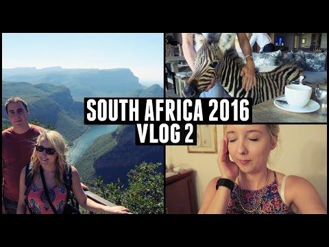 BREAKING MY CAMERA & BABY ZEBRAS! - South Africa Part 2! | BeautyCreep