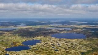 Рыбалка в Большеземельской тундре Ненецкого АО, июль 2016, фильм первый