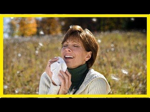 一直哈啾?吃優格能對抗花粉過敏