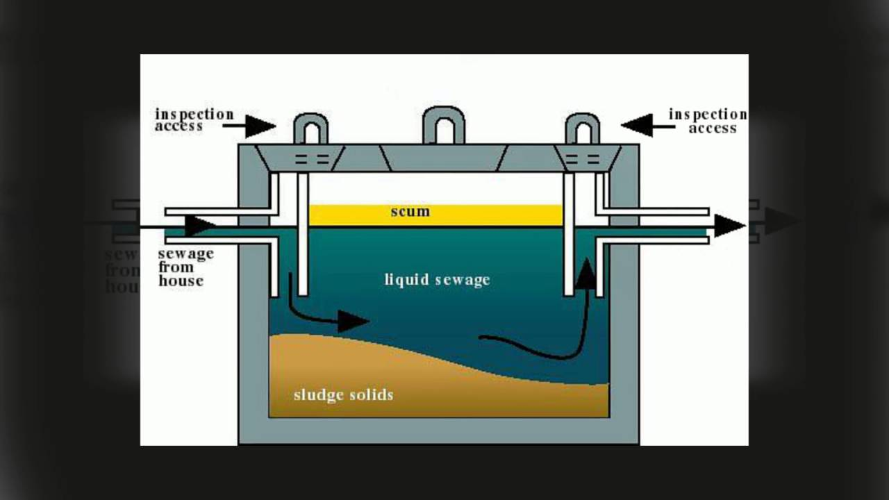 What Are The Components Of Septic System Parts Youtube