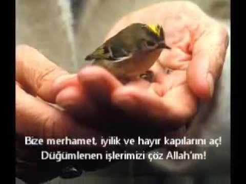 Ummete sesleniş Ahmet Doğan hoca