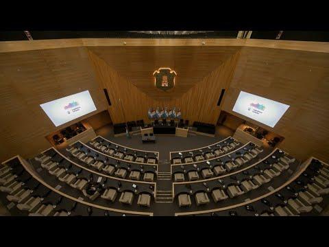 Período 142 - Sesión Especial N°2 del 18 de Marzo de 2020