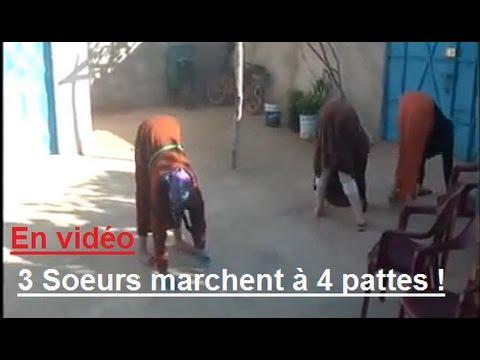 Poignant : trois sœurs handicapées de Dar El Kabdani (Driouch) marchent à quatre pattes