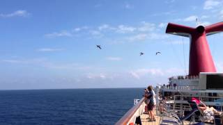 Klove 10th Anniversary Cruise 2013 - Pelican Fly By II - Carnival Destiny
