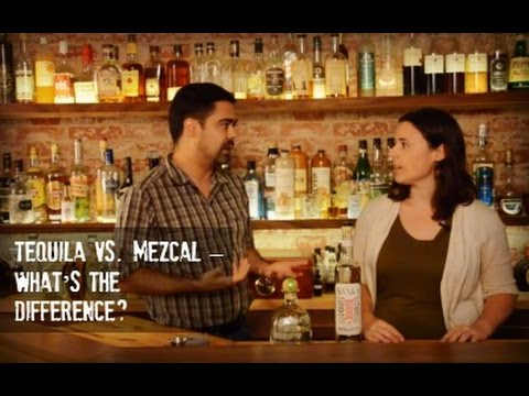 Tequila Vs  Mezcal - What's the Difference?