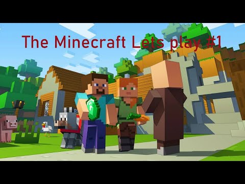 (Pro Gamer) The Minecraft Lets Play Episode 1 W Tefforoni