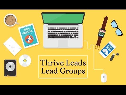 Thrive Leads WordPress Plugin: Lead Groups Anleitung (deutsch)