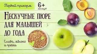 Рецепты: Нескучные пюре для малышей до года из сливы, яблока и гречихи