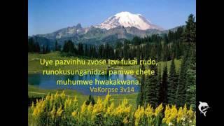 Blessing Shumba - Hama