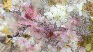 Antonio  Vivaldi: la  Primavera,  terzo  tempo (danza  pastorale)