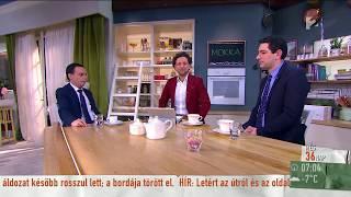 G. Fodor Gábor: ˝Nem lehet az egész ország Hódmezővásárhely˝ - tv2.hu/mokka