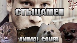 Иван Дорн - Стыцамен (Animal Cover)