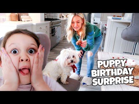 8TH BIRTHDAY PUPPY SURPRISE!