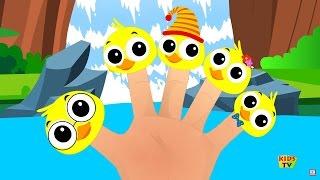 Itik Finger Keluarga | Lagu anak-anak | Kids Songs | Finger Family Rhymes | Ducks Finger Family