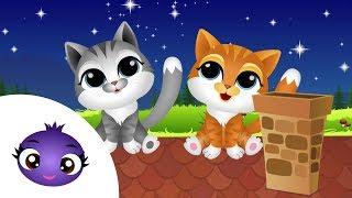 Aaa kotki dwa - kołysanka dla małych dzieci