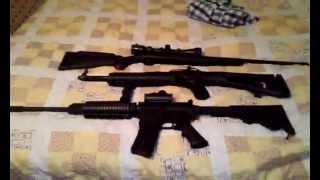 .556 DPMS AR15,Hi-Point 9mm Carbine,Ruger. 17HMR | Troy Hunt