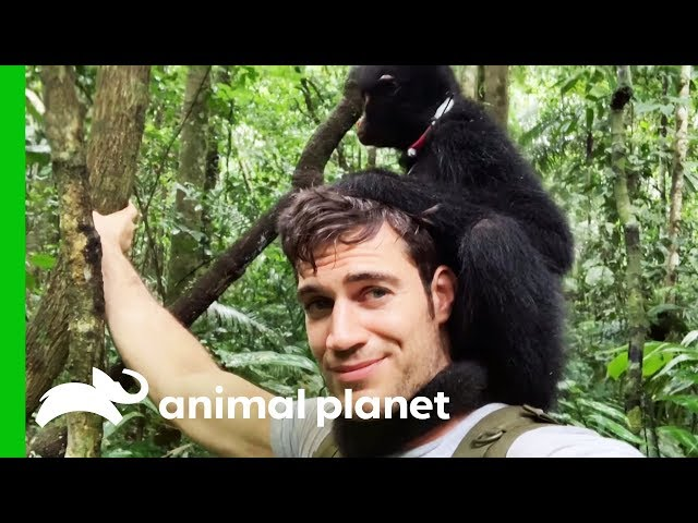 Adorable Spider Monkey Urinates On Dr. Evan's Back! | Evan Goes Wild
