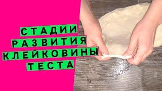 Развитие клейковины теста приемы работы с пшеничным хлебом ДЛЯ ЧЕГО НУЖНО УКРЕПЛЯТЬ КЛЕЙКОВИНУ