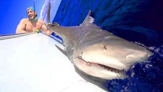 WE CAUGHT A MONSTER SHARK!