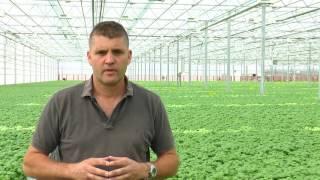 Single Green Grow from Danish Greenhouse Supply (Pусский)