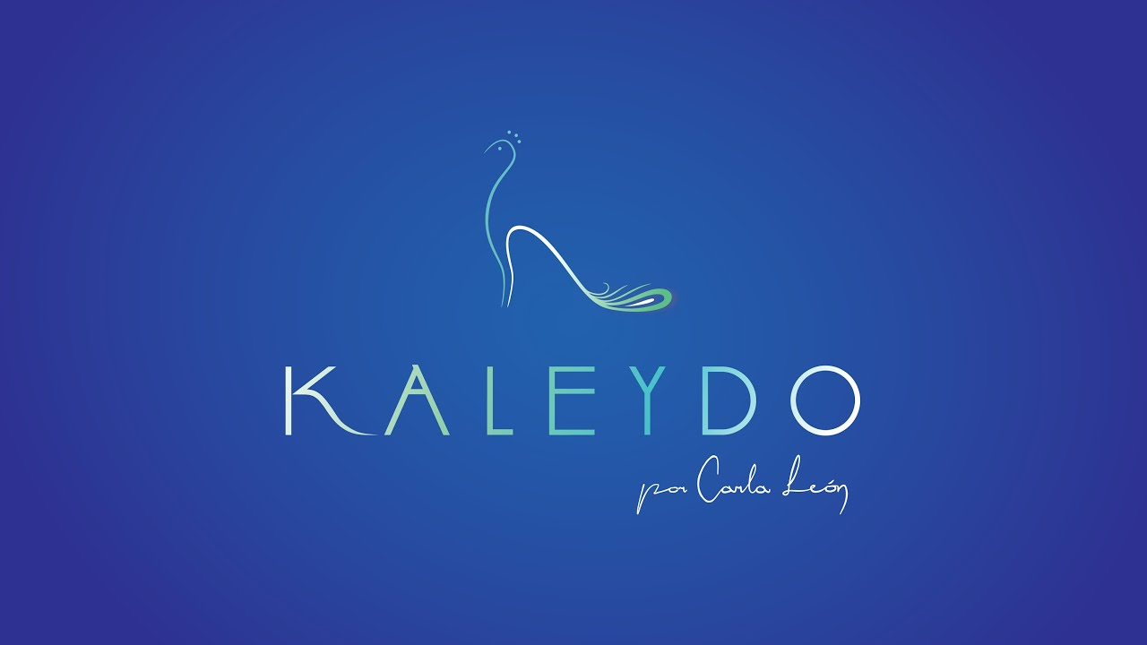 Kaleydo zapatos elegantes y divertidos youtube for Zapateros elegantes
